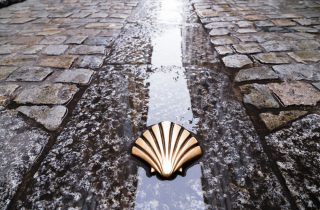 Symbol of the Camino de Santiago pilgrimage